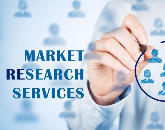 Research based Market Identification Services