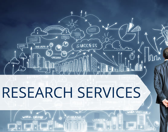 Custom Research Projects